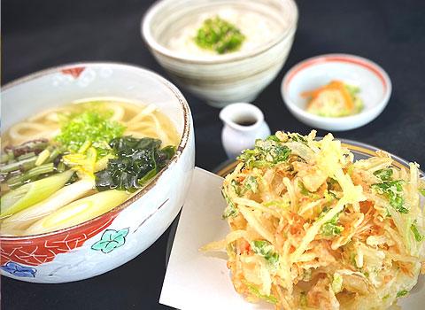 駿河湾産桜エビのかき揚げうどんと天丼セット
